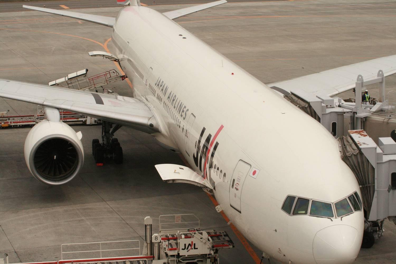 関西から飛行機で子連れディズニー。いくらかかる?時間は?羽田空港と